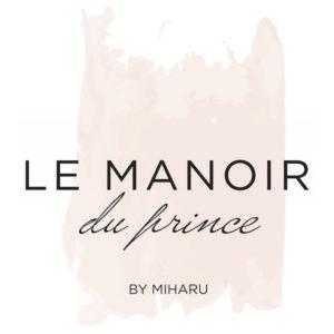 manoir-du-prince-repro-tech